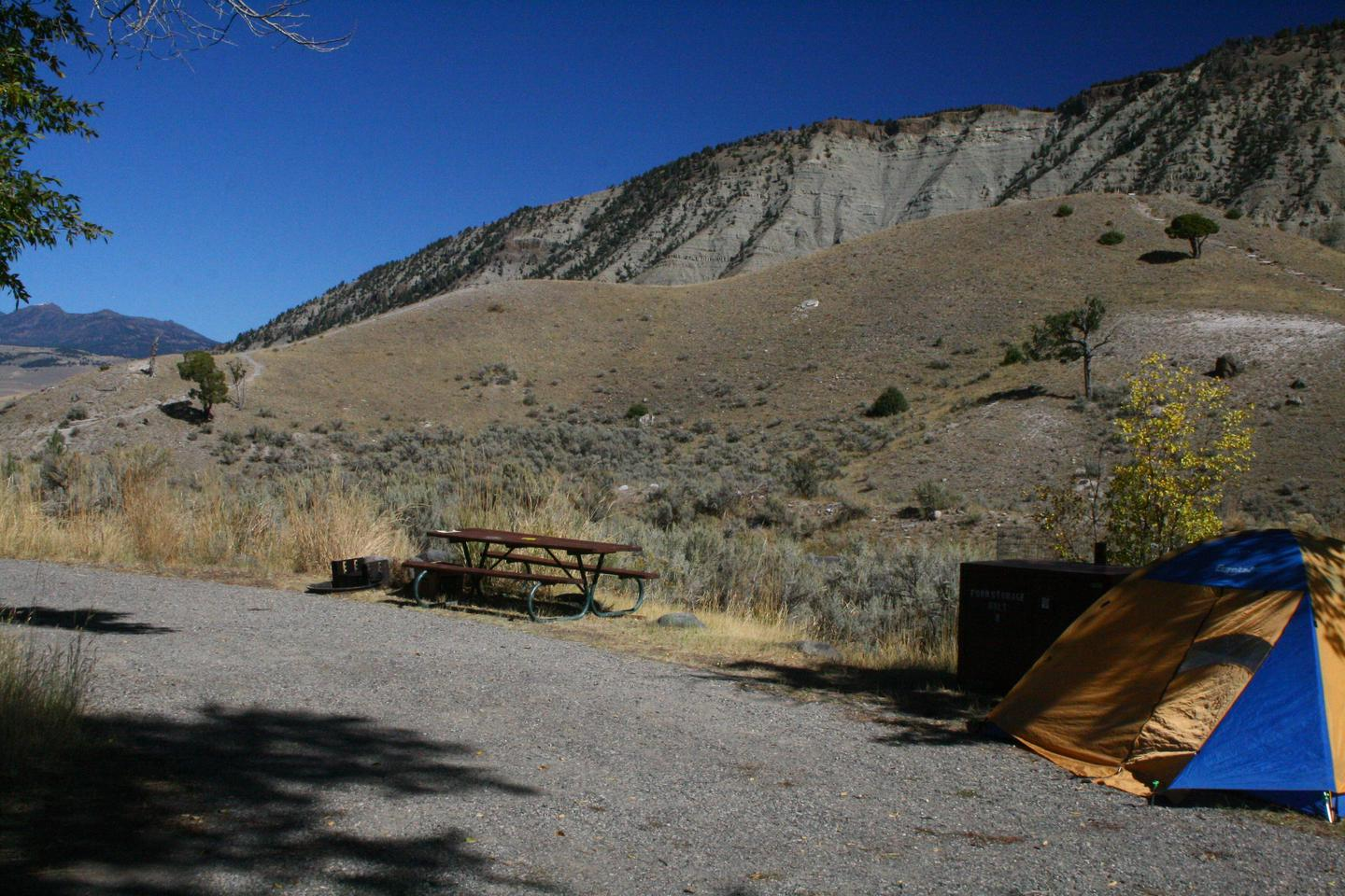 Mammoth Hot Springs Campground Site 8Mammoth Campsite #8