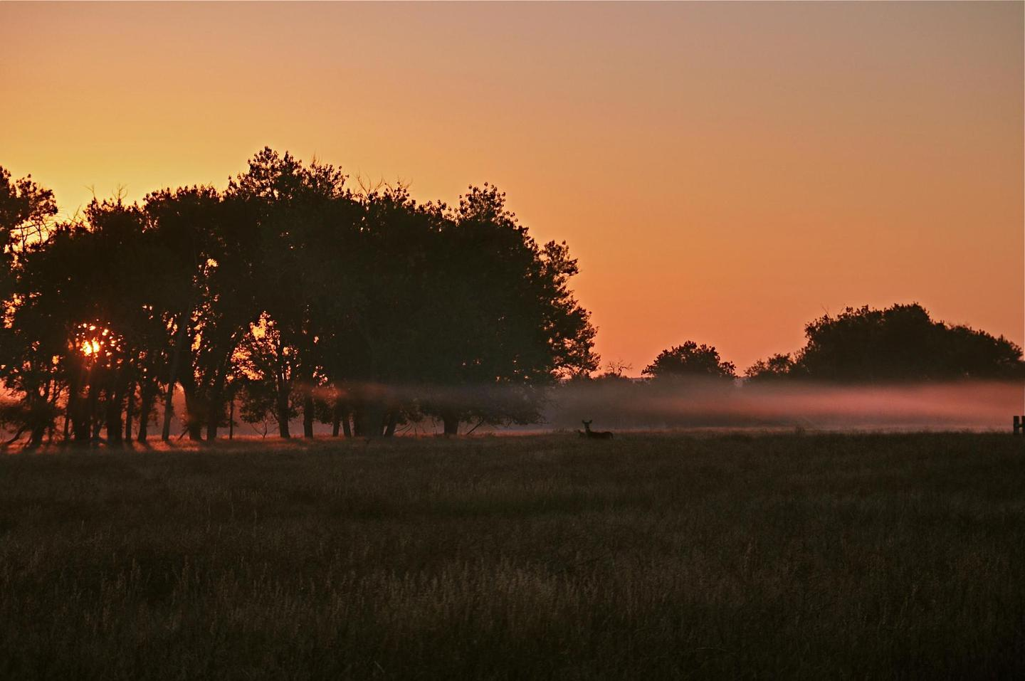 Morning Fog at the Old Holtclaw TractMorning fog north of Fort Laramie