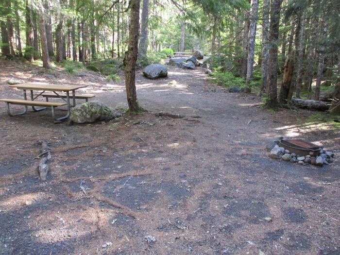 Picnic Table, Fire ring, tent areaPicnic table, fire ring, and tent area