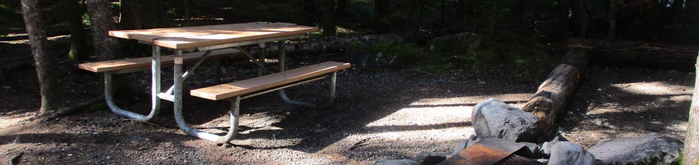 Picnic Table, Fire ring, tent area