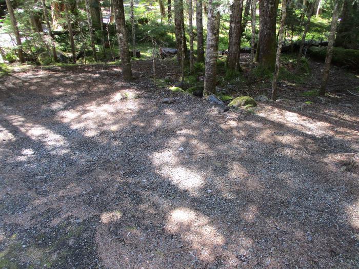 Tent Area