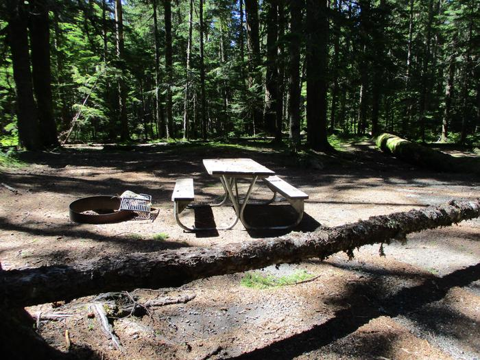 Picnic table, Fire ring