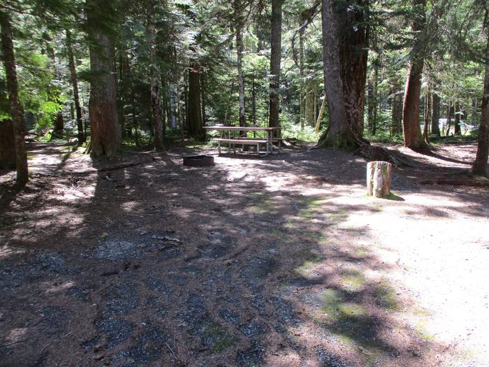 Picnic table, Fire ring, Driveway