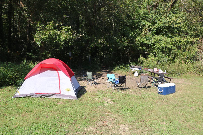 Steel Creek Camp Site #23 (photo 3)Steel Creek Camp Site #23