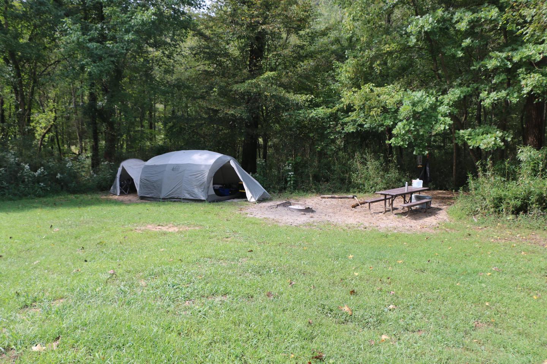 Steel Creek Camp Site #26-3Site #26