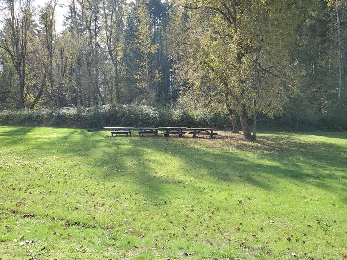Group Site E picnic tablesGroup Site E