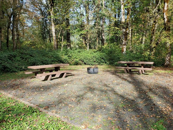 Picnic tables and campfire ring at site