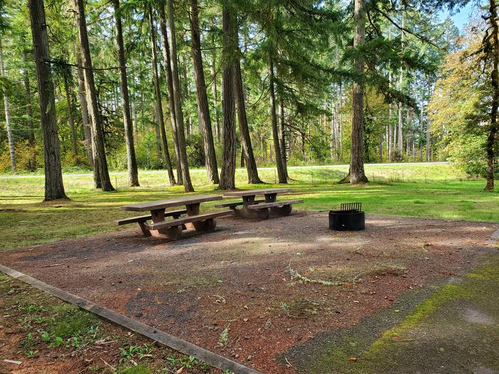 Site 5D picnic tables and campfire ringSite 5D
