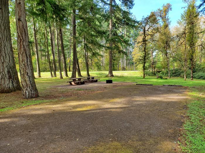 Site 5D driveway and picnic areaSite 5D