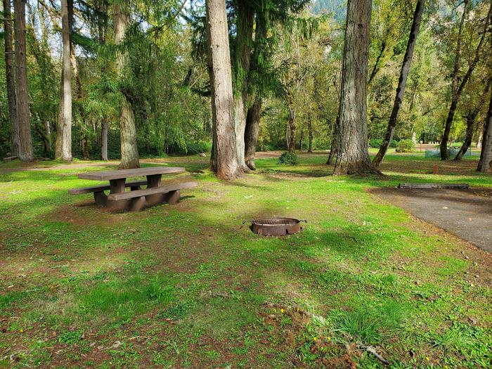 Site 8 picnic table and fire ringSite 8