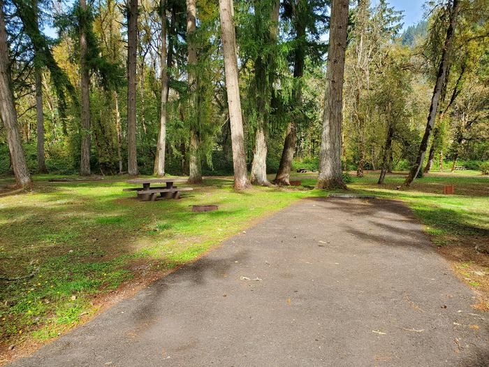 Site 8 driveway and picnic areaSite 8
