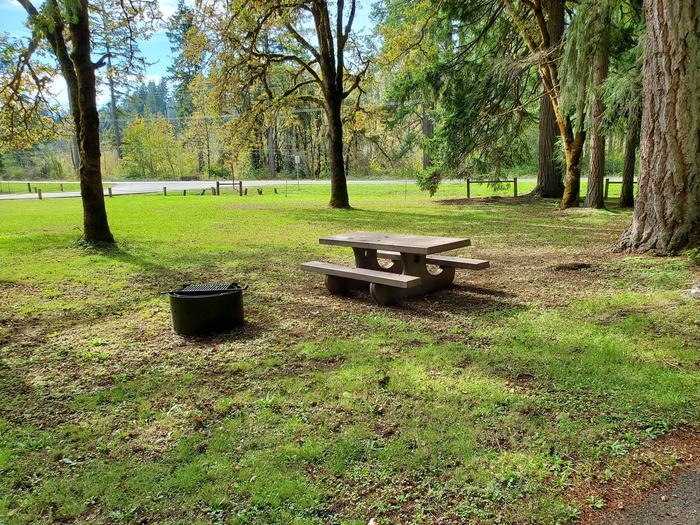 Site 9 picnic table and fire ringSite 9