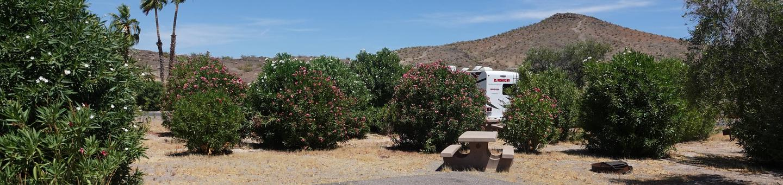 CB Campsite located in a desert setting 0604Callville Bay Campground Site 6