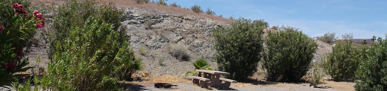 Campsite located in a desert setting1Callville Bay Campground Site 9