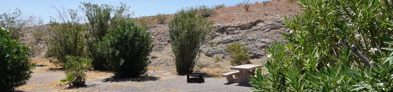 CB Campsite located in a desert setting 1103Callville Bay Campground Site 11