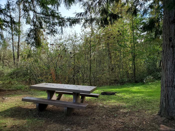 Site 14 picnic table and fire ringSite 14