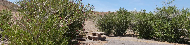 CB Campsite located in a desert setting 1604Callville Bay Campground Site 16