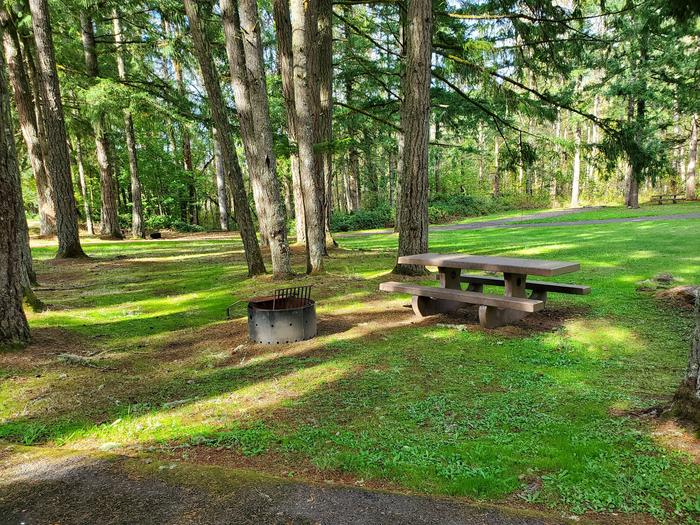 Site 15 picnic table and fire ringSite 15