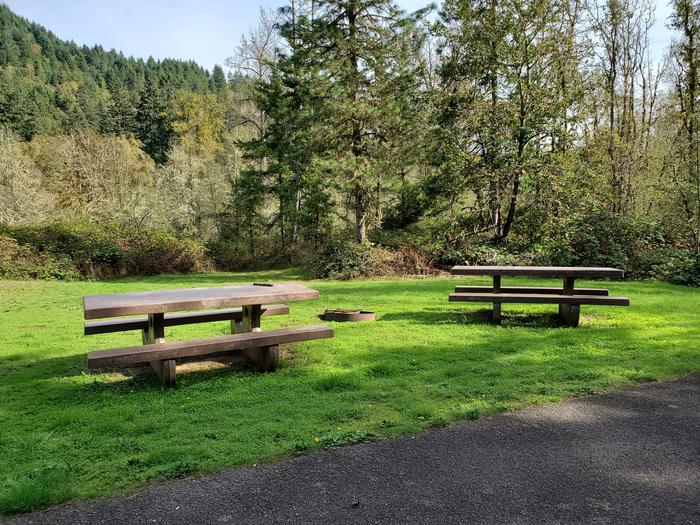Site 16D picnic tables and fire ringSite 16D