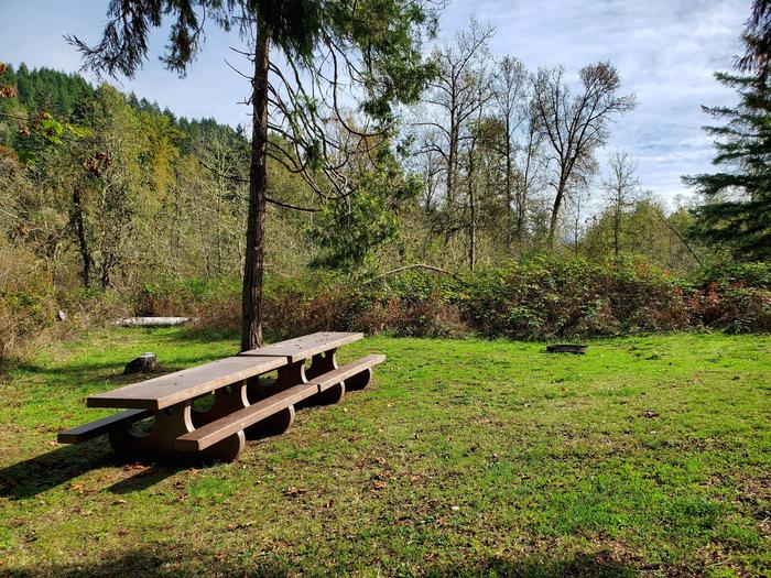 Site 18D picnic tables and fire ringSite 18D