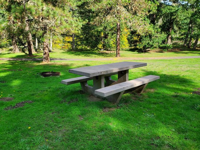 Site 26 picnic table and fire ringSite 26