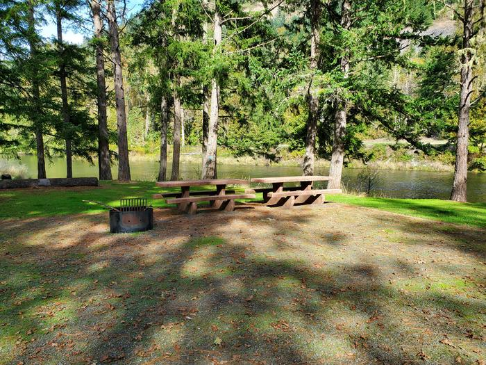 Site 38D picnic tables and fire ringSite 38D