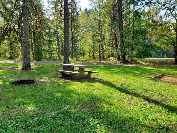 Site 40 picnic table and fire ringSite 40