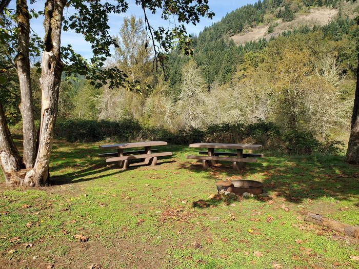 Site 44D picnic tables and fire ringSite 44D