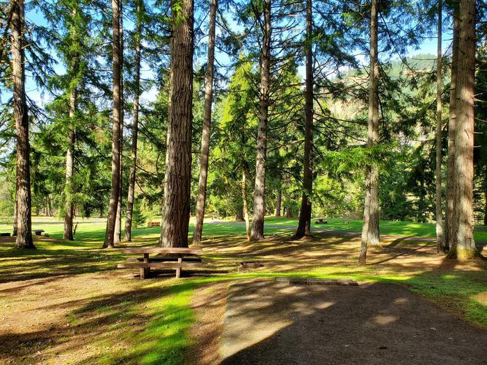 Site 53 picnic areaSite 53