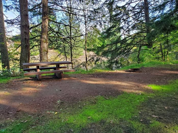 Site 57 picnic table and fire ringSite 57