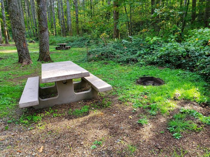 Site 69 picnic table and fire ringSite 69