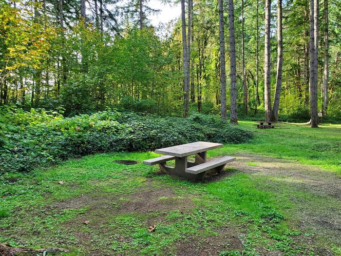 Site 69 picnic areaSite 69