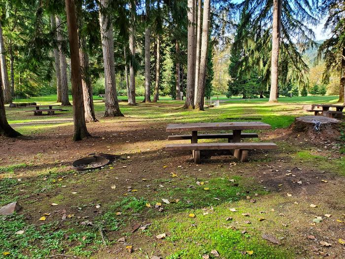 Site 70 picnic table and fire ringSite 70