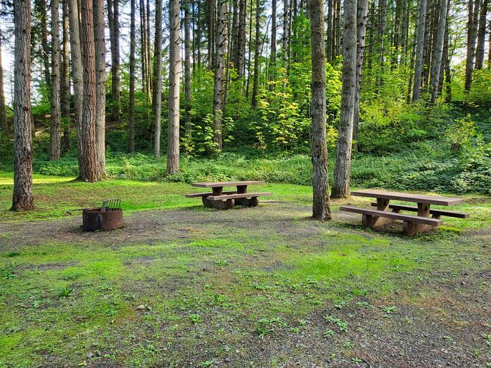 Site 74D picnic tables and fire ringSite 74D