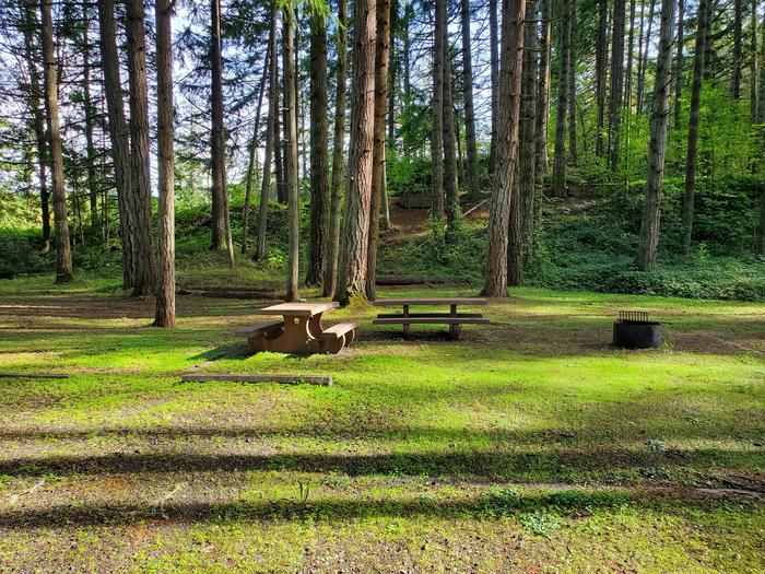 Site 76D picnic tables and fire ringSite 76D
