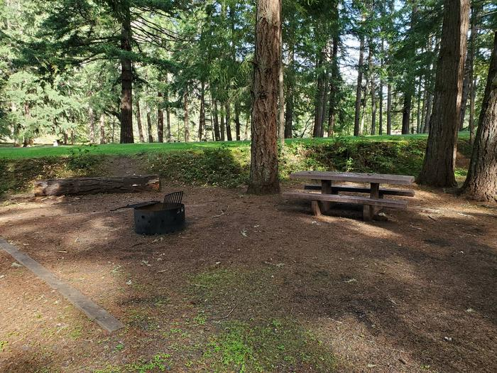 Site 78 picnic table and fire ringSite 78