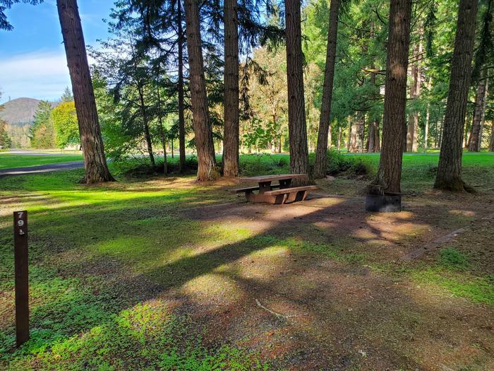 Site 79 picnic areaSite 79