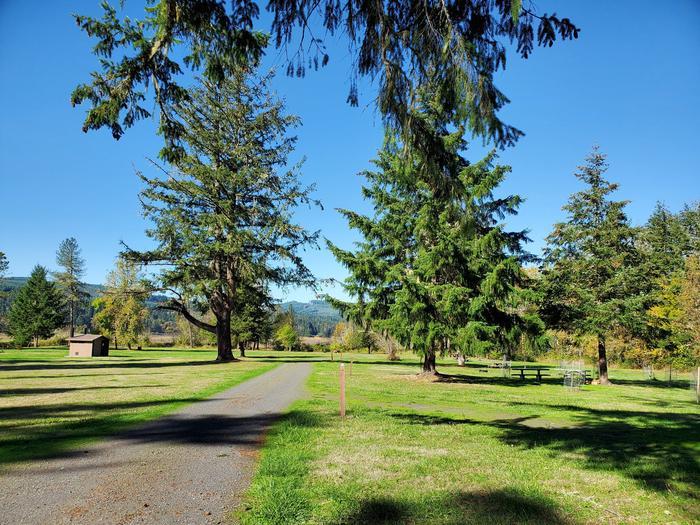 Primitive CampsitesPine Meadows Primitive Sites