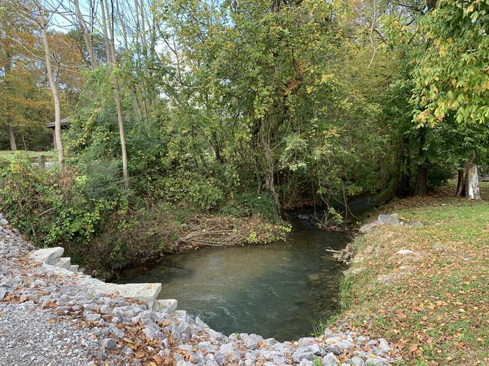 Creek Running Through Campground