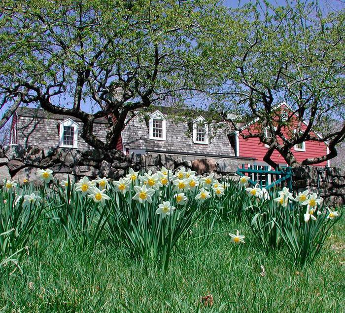 The Burlingham House Visitor Center in SpringVisit the Burlingham House Visitor Center.