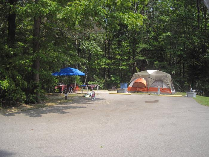 D016D016 is a double parking spot.  Trailer awning opens over parking space.  Best suited for Pop-up or tent.