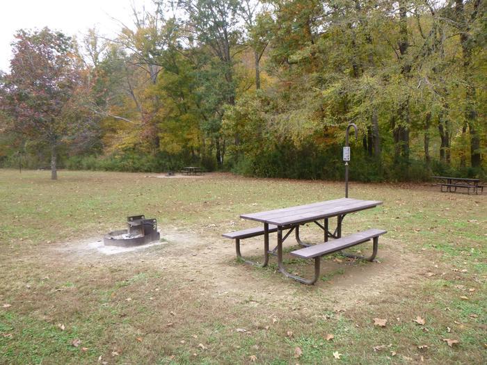 Steel Creek Camp Site #13 (photo 5)Steel Creek Camp Site #13