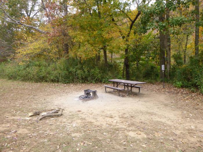 Steel Creek Camp Site #14 (photo 7)Steel Creek Camp Site #14
