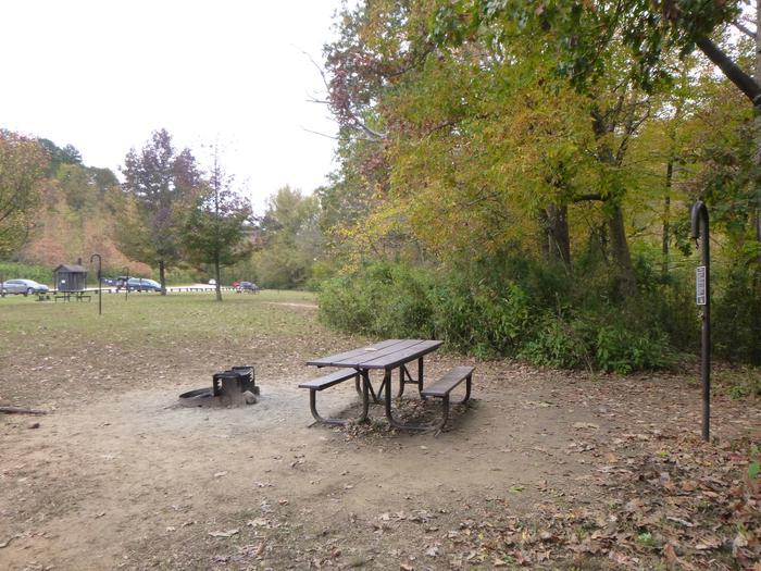 Steel Creek Camp Site #14 (photo 8)Steel Creek Camp Site #14
