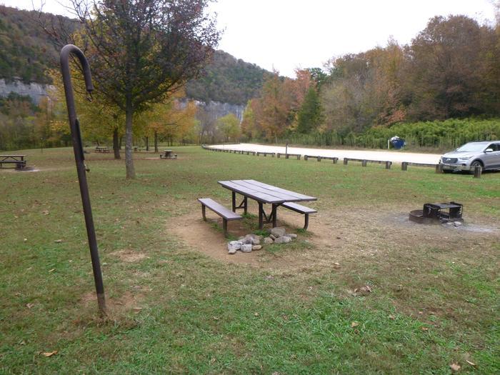 Steel Creek Camp Site #15 (photo 8)Steel Creek Camp Site #15