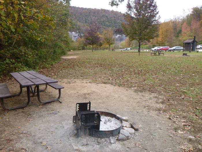 Steel Creek Camp Site #21 (photo 9)Steel Creek Camp Site #21