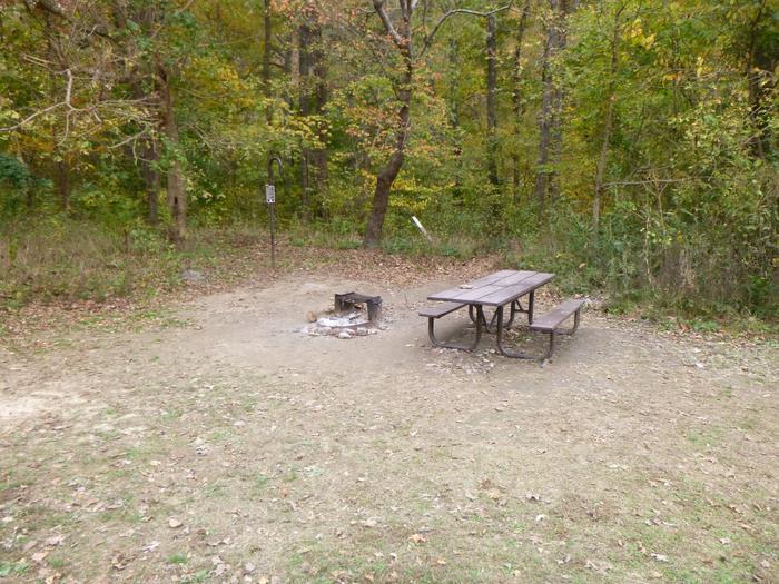 Steel Creek Camp Site #23 (photo 5)Steel Creek Camp Site #23