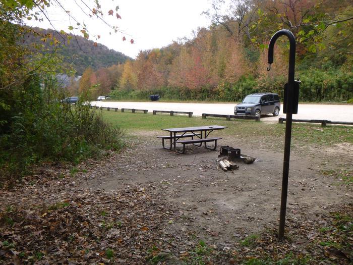 Steel Creek Camp Site #23 (photo 6)Steel Creek Camp Site #23