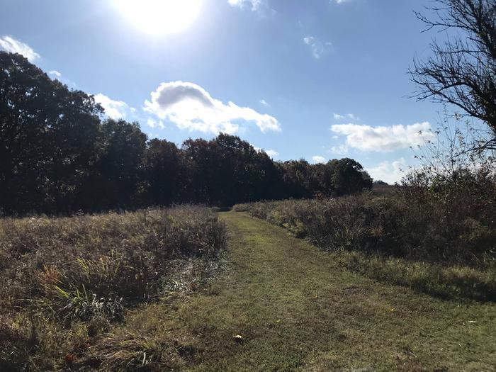 Spencer Creek Hiking Trail