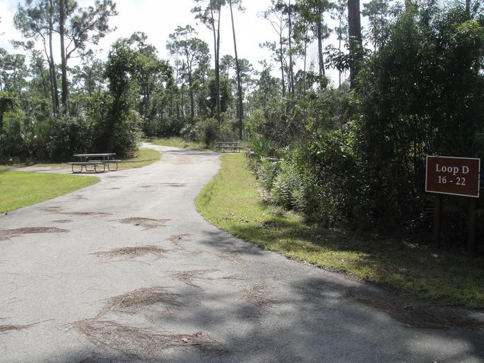 LPK Loop DOne of the camping loop areas at Long Pine Key Campgroung